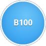 Bionafta B100